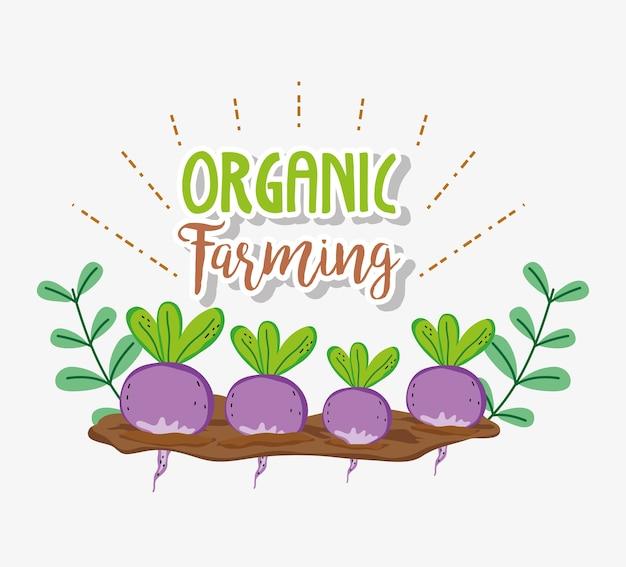 Organic farming cartoons