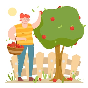 Organic farming concept with woman picking apples