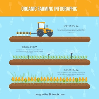 Agricoltura biologica infografica