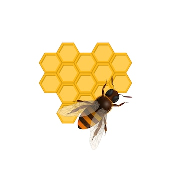 Organic farming symbol with honeybee