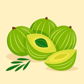 Organic flat amla illustration