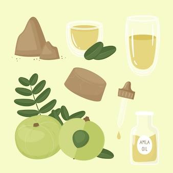 Organic flat design amla fruit elements