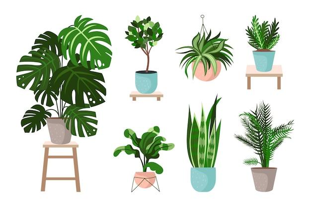 Коллекция органических растений в плоском дизайне