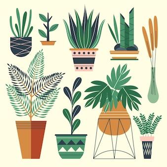 Collezione di piante d'appartamento dal design piatto organico