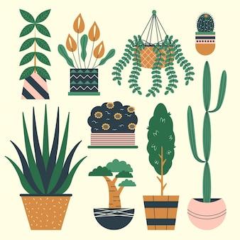 Organic flat design houseplant collection