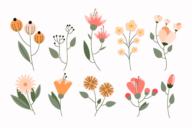 Collezione di fiori piatti organici Vettore gratuito