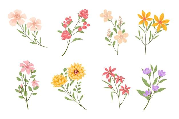 Collezione di fiori piatti organici