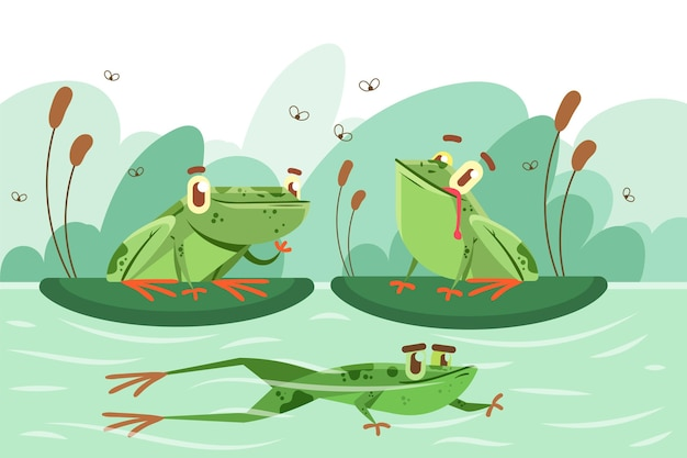 Organic flat frogs in water illustration