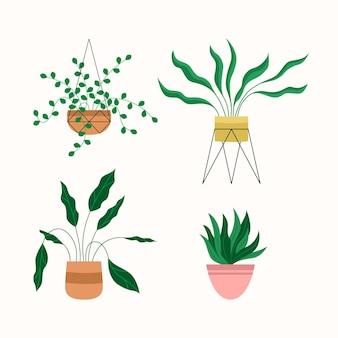 Collezione di piante d'appartamento piatte organiche
