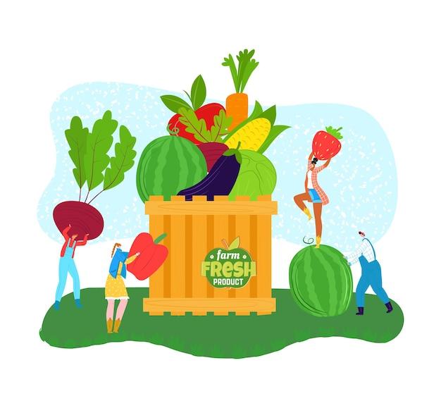 Органические продукты питания, свежий природный продукт с фермы, векторные иллюстрации. персонаж мужчина женщина люди собирают натуральные фрукты, овощи в огромную коробку. продукция здорового земледелия для рынка натурального сельского хозяйства.