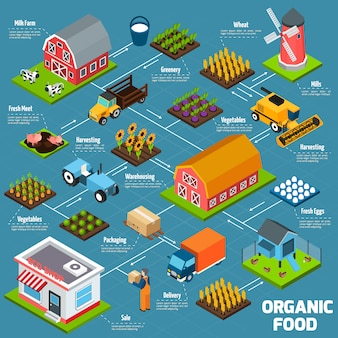 Organic food isometric flowchart