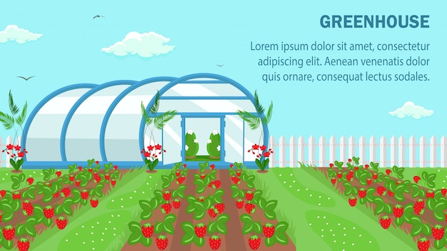 Organic fruits cultivation web banner template