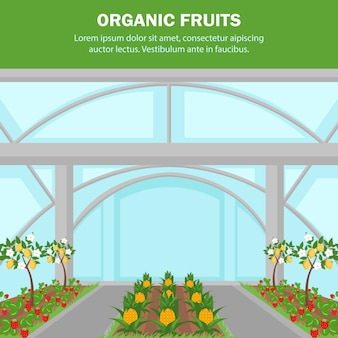 Organic fruits indoor cultivation poster template