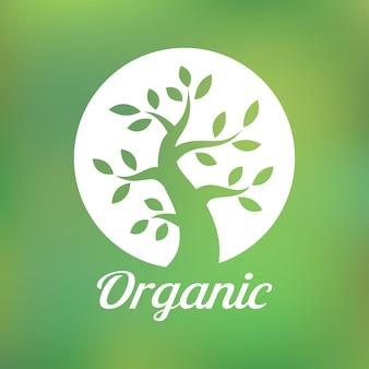 유기농 녹색 나무 로고