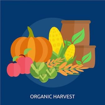Progettazione raccolta organica