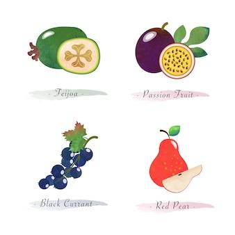 有機健康食品フルーツフェイジョアパッションフルーツブラックカラント赤梨