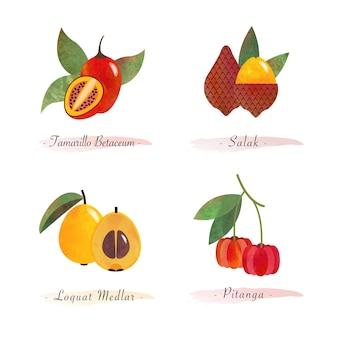 Organic healthy food fruit tamarillo betaceum salak loquat medlar pitanga