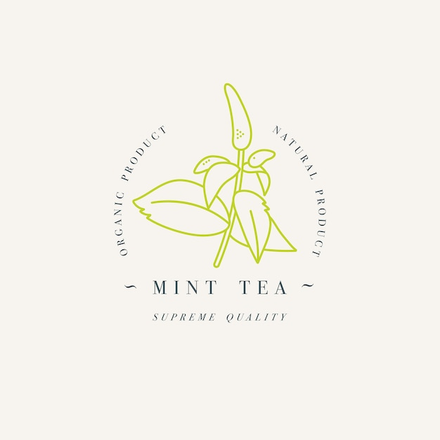 Organic herb mint tea. logo template in trendy linear style isolated