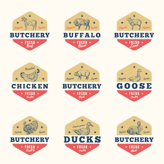 Organic meat and poultry abstract  signs, badges or logo templates set.