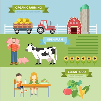 Organic natural farm flat style thematic infographics concept