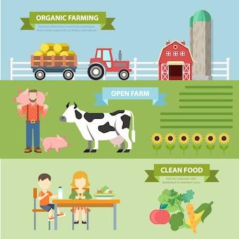 Concetto di infographics tematico stile piatto fattoria naturale biologica