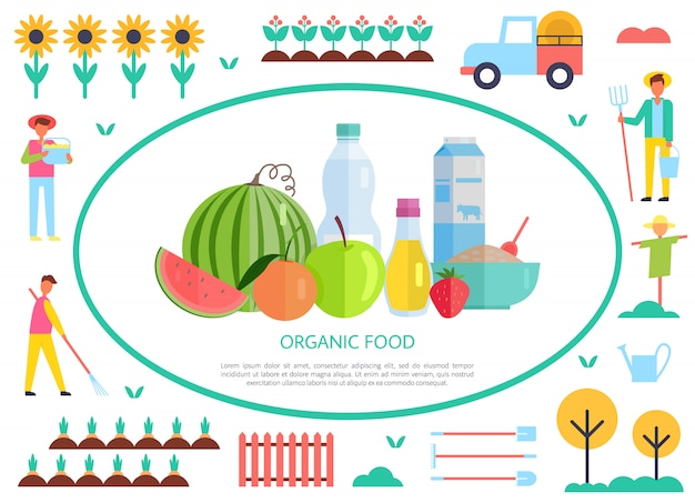 Organic and natural food production, vector banner