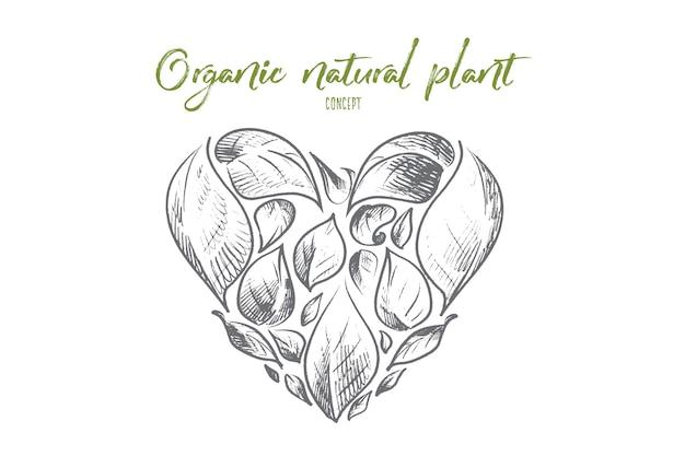 有機天然植物の概念図