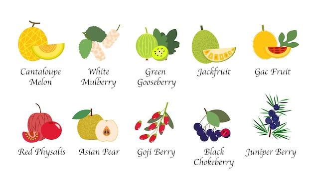 有機自然健康フルーツ分離コレクション