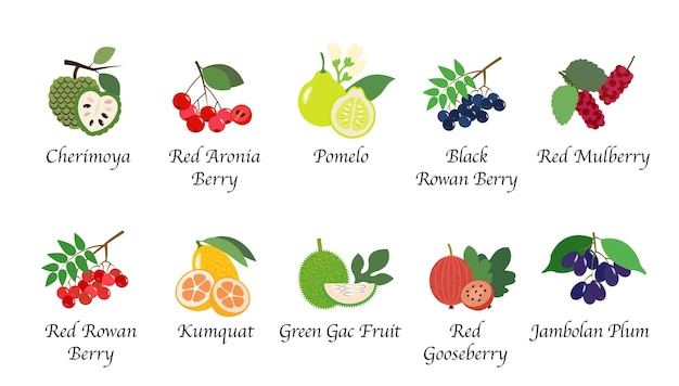 Изолированная коллекция фруктов здоровья органической природы