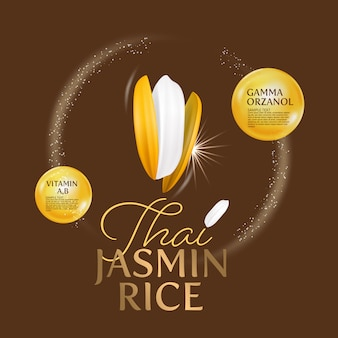 Organic paddy rice, ear of paddy, ears of thai jasmine rice isolated illustration