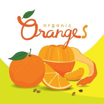 Organic peeled orange slices