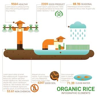 Organic rice infographic.