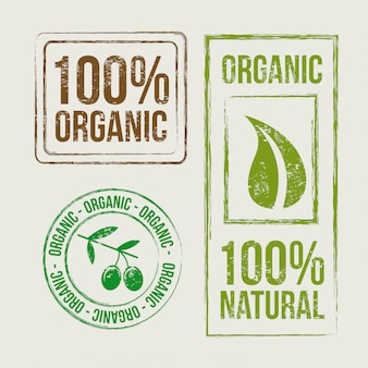 Organic seals over beige background vector illustration