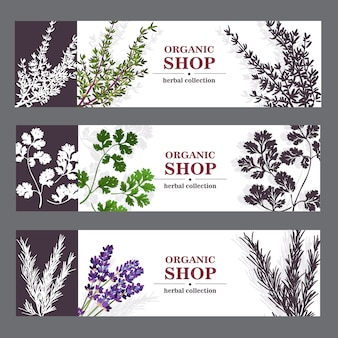 Organic shop banners with herbs