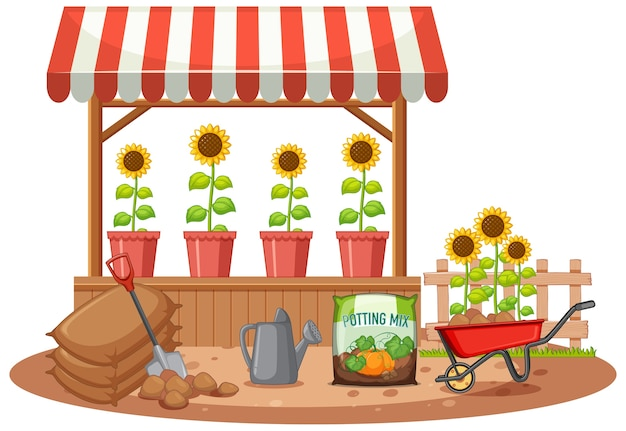 가게에 유기농 해바라기