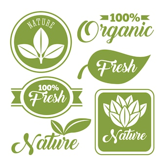 Organic vegan and natural emblems