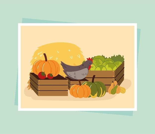 유기농 야채와 닭고기