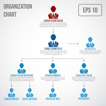 Organizational chart infographic template