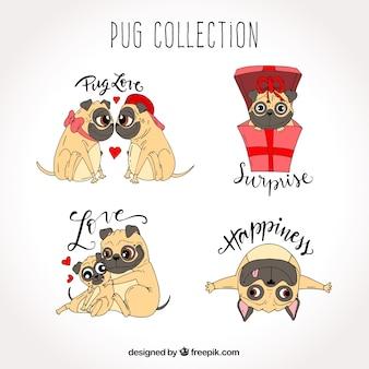 Original pack of lovely pugs