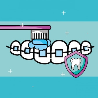 Orthodontics brushing tooth shield protection care