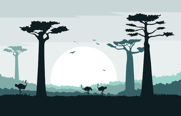 Ostrich in baobab tree savanna landscape africa wildlife illustration