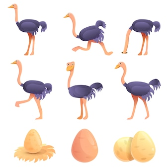 Ostrich set, cartoon style
