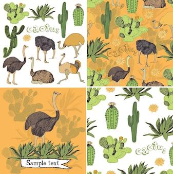 Ostriches set