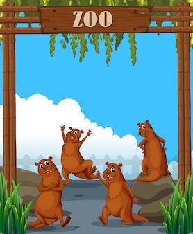 동물원에서 수달