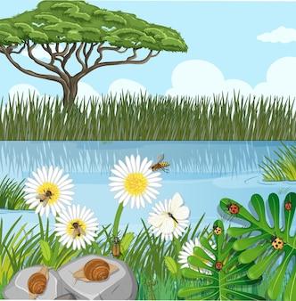 Scena della natura all'aperto con fiori e molti insetti