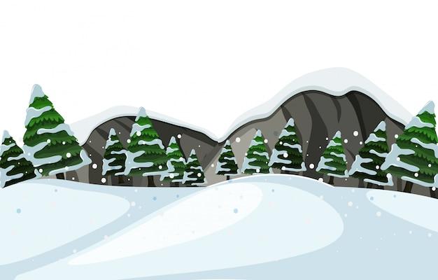 An outdoor winter landscape