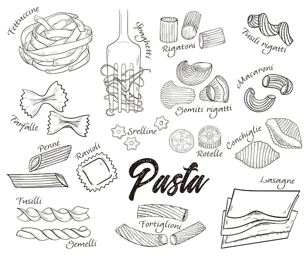Outline hand drawn italian pasta set with names in vintage style.