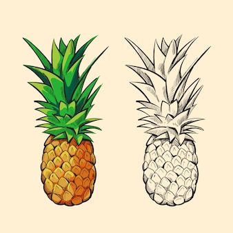 Outline and orange pineapple