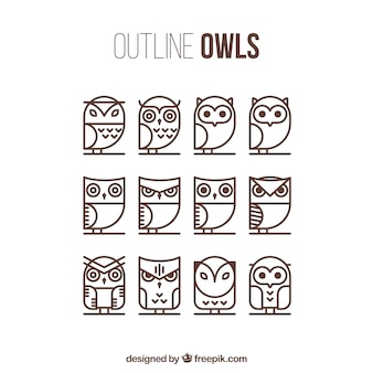 Outline owl collection of twelve