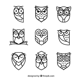 Outline owl collection